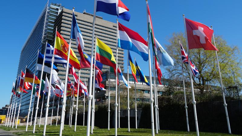 Flags.jpg#asset:2350
